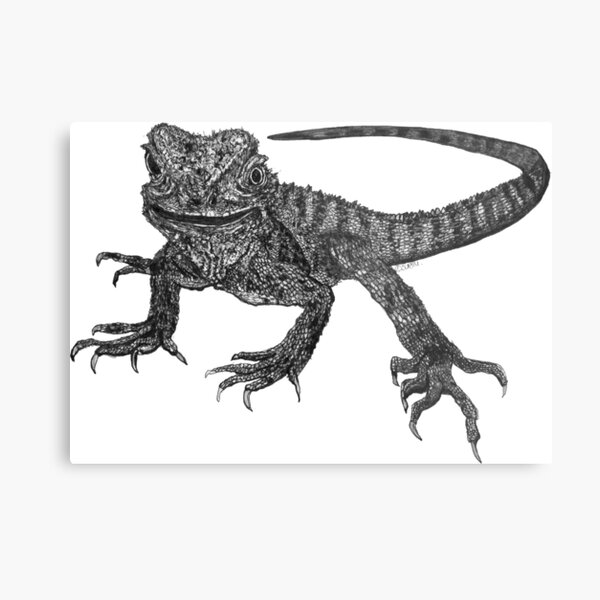 Kenneth the Water Dragon Metal Print