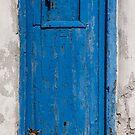 Little Cat Door by Tony Cave