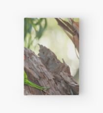Rainbow Lorikeet_02 Hardcover Journal