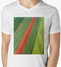 Tulip Field Men's V-Neck T-Shirt