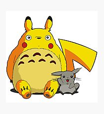 Totorotchu and Pikaro Photographic Print