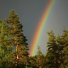 The Rainbow by julie08