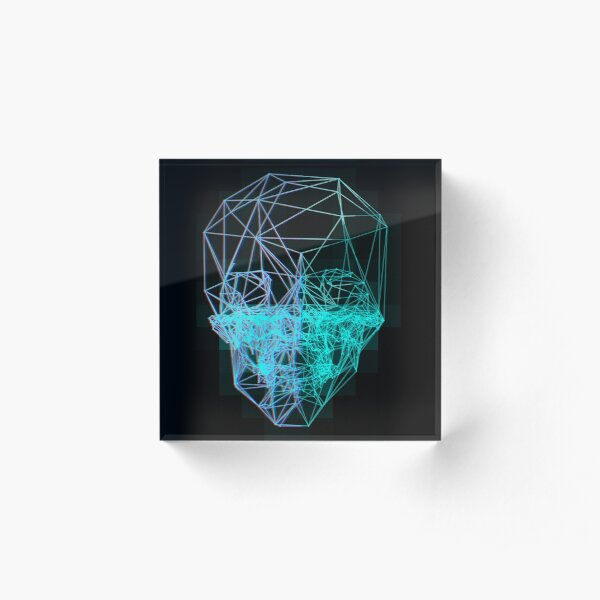 3D Skull Acrylic Block
