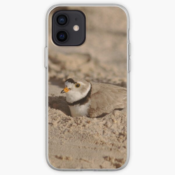 Nesting Piping plover iPhone Soft Case