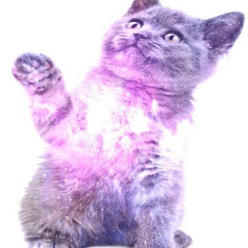 Galaxy Cat v2 by FusionsStudio