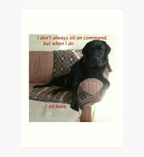 Black Dog Sits On Command on Couch Art Print