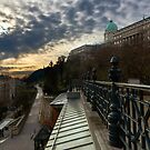 Dawn over Buda Castle, Budapest by Fernando Machado
