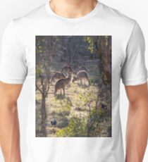Kangaroos and Magpies - Canberra - Australia T-Shirt