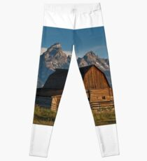 John and Bartha Moulton Barn Leggings
