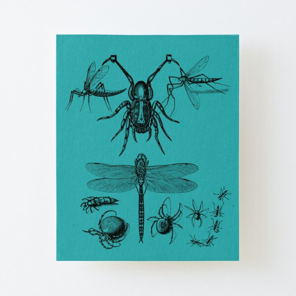 Such different insects. Canvas Mounted Print
