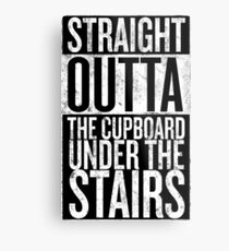 Straight out of the Cupboard Metal Print