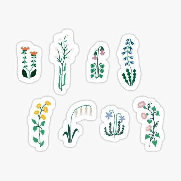 Minimal Artsy Flower Sticker Pack Assorted Sticker