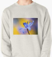 Blue romantic flower Pullover