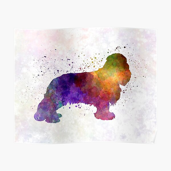 Cavalier King Charles Spaniel in watercolor Poster