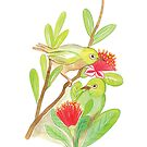 Silver eye birds and Feijoa flowers by Anna Lloyd