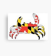Maryland Crab Canvas Print