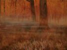 """""""Early Mornin' in Georgia""""... prints and products by © Bob Hall"""