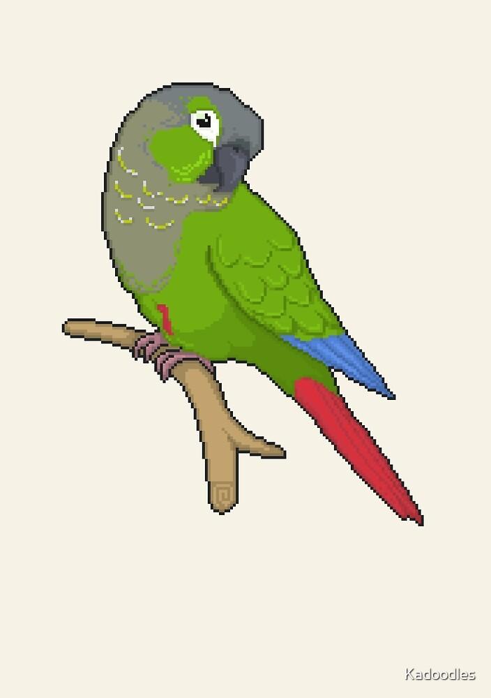 Pixel / 8-bit Parrot: Green-cheek Conure by Kadoodles