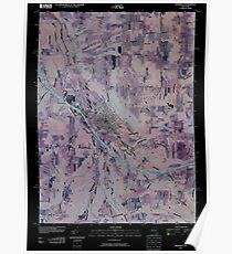 New York NY Dansville 20100213 TM Inverted Poster