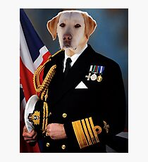 Admiral Lab Photographic Print