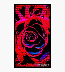 Red Graffiti rose on wall Photographic Print