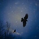 Deep Blue Winter Flight by gothicolors