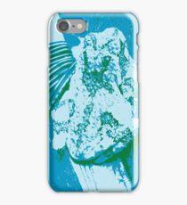 Warhol Frog iPhone Case/Skin