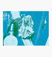 Warhol Frog Photographic Print
