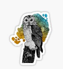 Barred owl in color Sticker