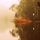 Misty Morning Reflection By Lorraine McCarthy by Lozzar Landscape