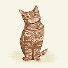 Orange Tabby Cat sitting pet portrait cute cat lady gifts must have pet cat illustrations by PetFriendly