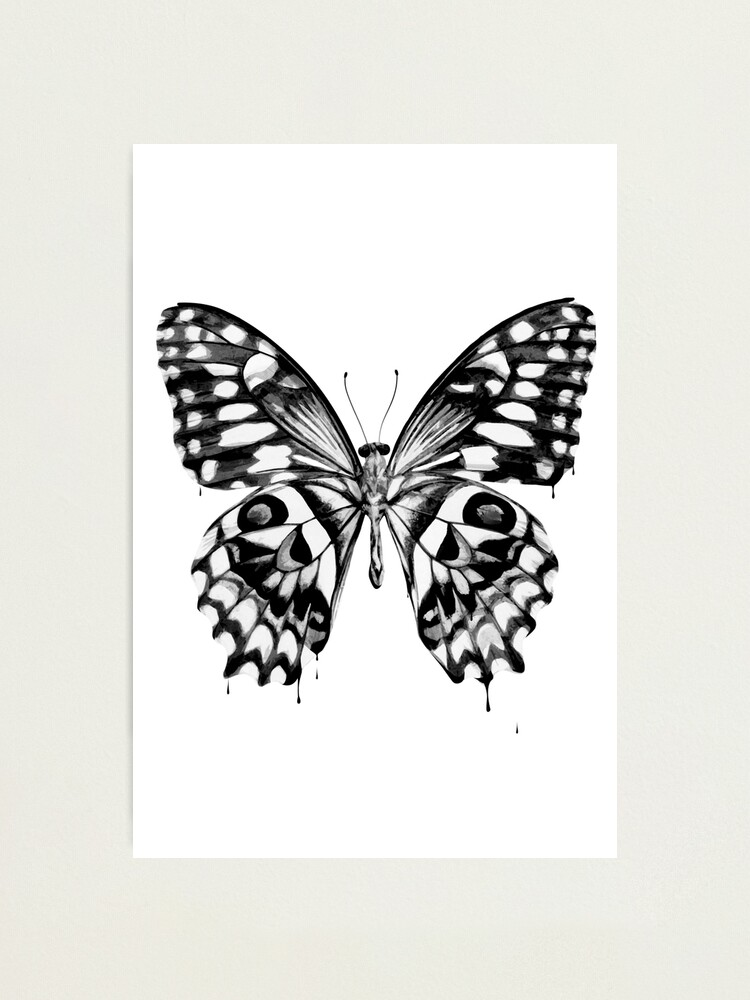 Alternate view of Black butterfly Photographic Print