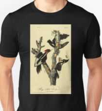 James Audubon Vector Rebuild - The Birds of America - From Drawings Made in the United States and Their Territories V 1-7 1840 - Ivory Billed Woodpecker T-Shirt