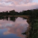 Cloud Shine, Swan Park, Ballerena ,Derry  by mikequigley