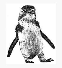 Ink Penguin Photographic Print