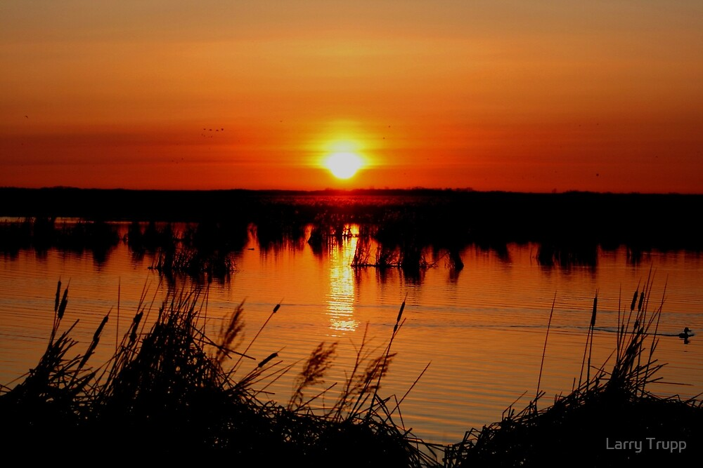 Sunrise over Oak Hammock Marsh by Larry Trupp