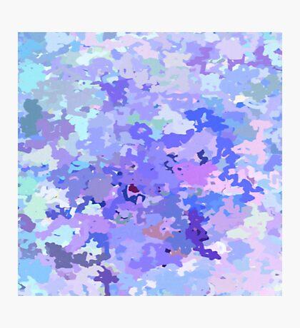 Lilac zinc Photographic Print