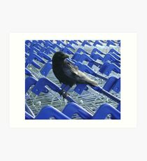 firm purchase (crow with shopping trolleys) Art Print