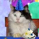 Birthday Oreo Spotted Cat by jkartlife
