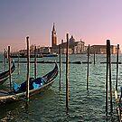 Venezia by gluca