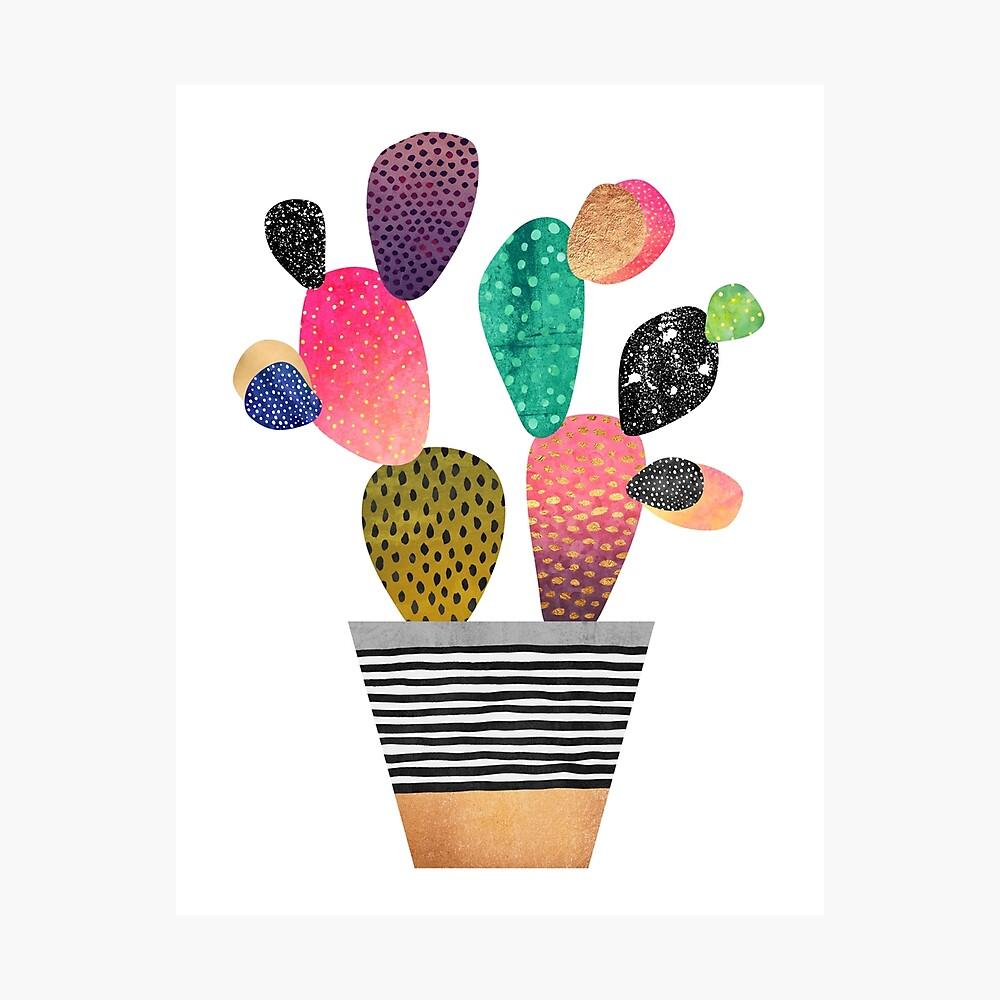 Happy Cactus Photographic Print