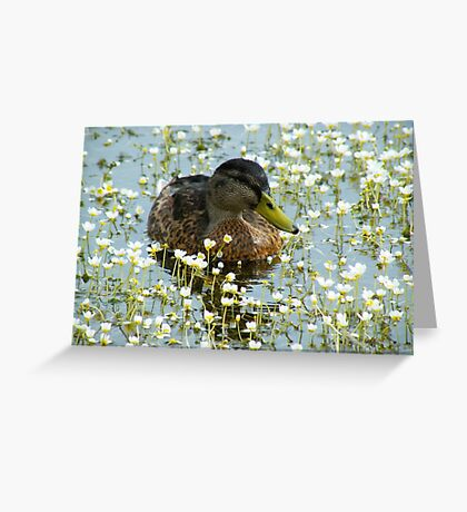 Flower Duck Greeting Card