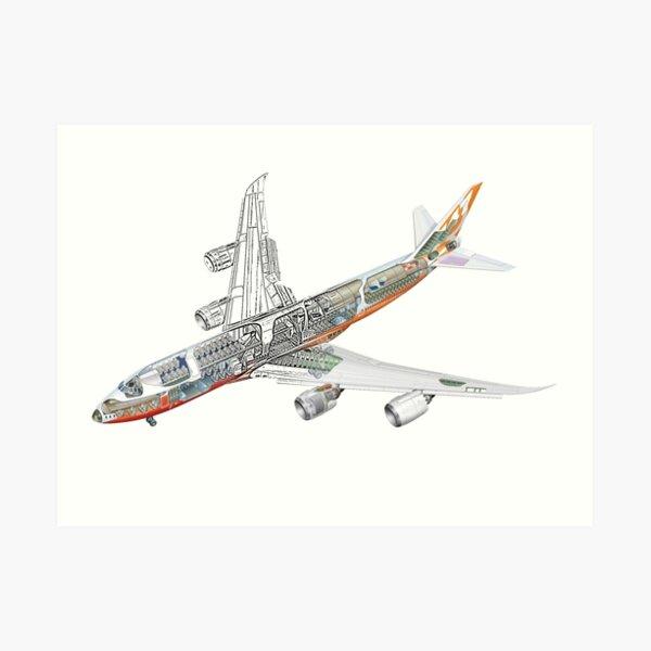 Boeing 747-800 intercontinental Art Print