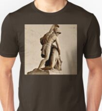 MENELAUS SUPPORTING THE BODY OF PATROCLUS  T-Shirt