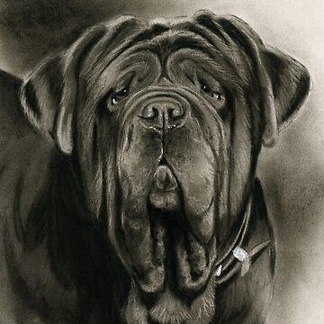 Neapolitan Mastiff, Mastino Neapolitano by art-of-dreams