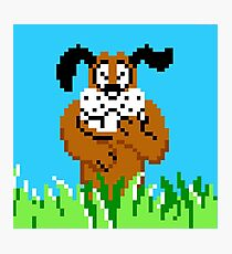Duck Hunt from NES Photographic Print
