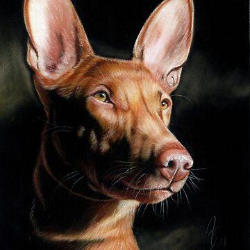 Pharaoh Hound pharaoh dog by art-of-dreams