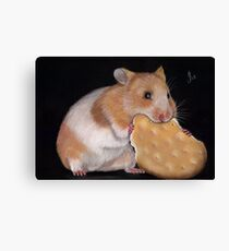Hamster Goldhamster Canvas Print