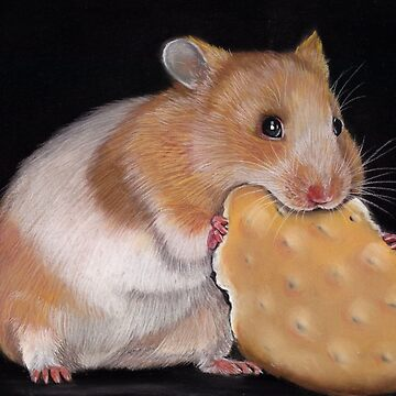 Hamster golden hamster by art-of-dreams