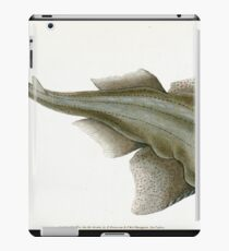 The Natural History of British Fishes Edward Donovan 1802 037 iPad Case/Skin